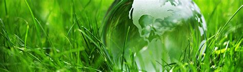 Ecology and the Environment, Master's Programme, 120