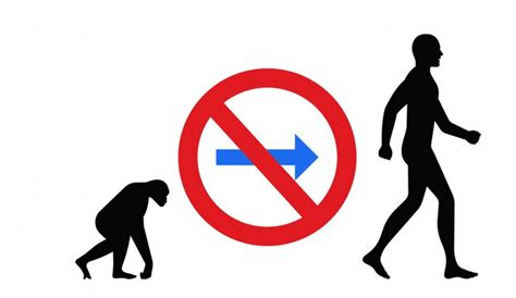 Dear Science: If we are all apes, why don't we see