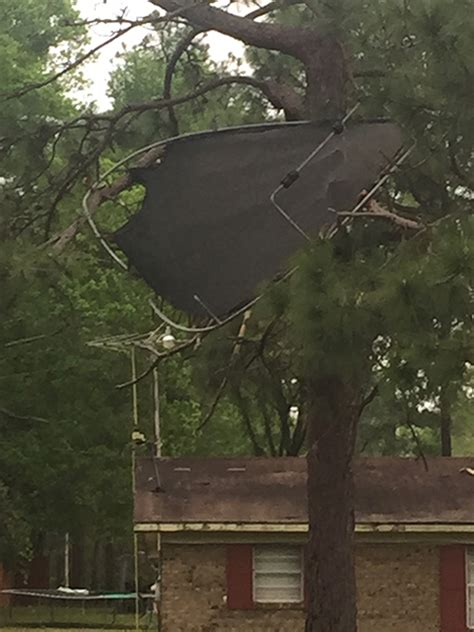 WEATHER: Photos from Last Night's Storm Damage | Sowega Live